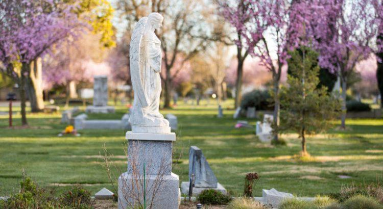 We're now an official Level II Arboretum – Davis Cemetery